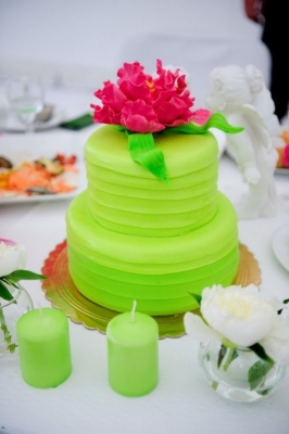Торт Зеленый рай за 1кг
