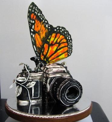 Торт Фотографу 3 кг