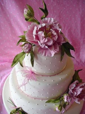 Торт Пион 7кг