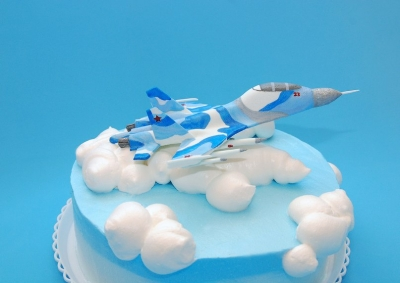 Торт Пилот 2кг