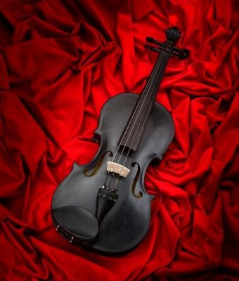 Скрипка 1 час