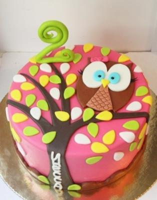 Торт Совушка-Сова 2 кг
